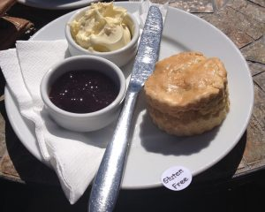 Gluten free scone from rest a while tea garden!